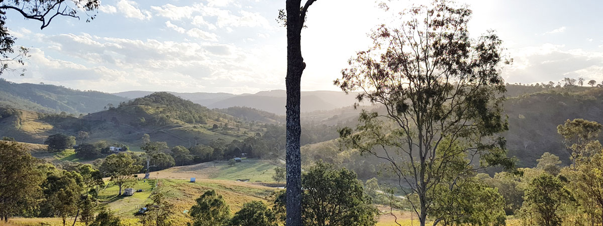 Callemondah Farm. In the foothills of Mt Mee, in Queensland's D'Aguilar range